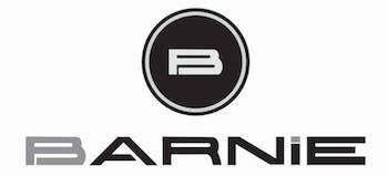 logotipo barnie recreativas